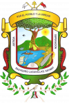 ESCUDO_SAN_PEDRO_LAGUNILLAS
